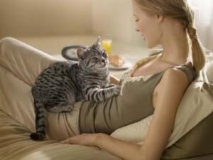 Лечебная кошка
